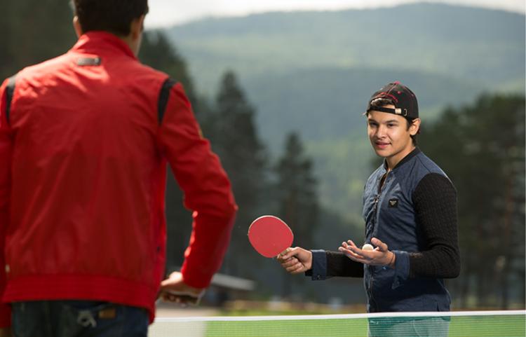 Теннис и бильярд