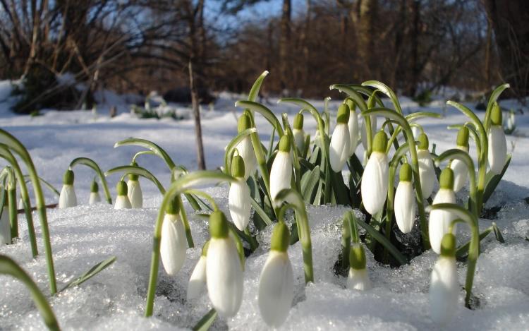 Весь апрель в будние дни на каждые вторые сутки проживания 50% скидка